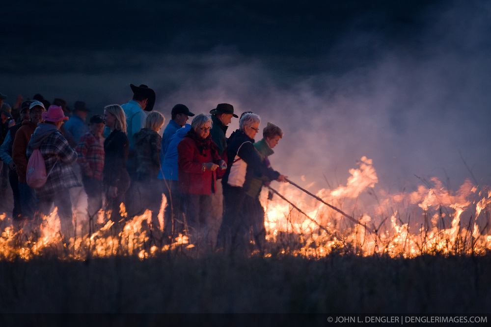 """Participants in """"Flames in the Flint Hills"""" drag fire across the prairie grass of the Flying W Ranch near Clements, Kansas. This agritourism event allows ranch guests to take part in lighting the prescribed burns. Prairie grasses in the Kansas Flint Hills are intentionally burned by land mangers and cattle ranchers in the spring to prepare the land for cattle grazing and help maintain a healthy tallgrass prairie ecosystem. The burning is also an effective way of controlling invasive plants and trees. The prairie grassland is burned when the soil is moist but grasses are dry. This allows the deep roots of the grasses to survive and the burned grasses on the soil surface return as nutrients to the soil. These nutrients allow for the rapid growth of new grass. After approximately two weeks of burning, new grass emerges. Less than four percent of the original 140 million acres of tallgrass prairie remains in North America. Most of the remaining tallgrass prairie is in the Flint Hills in Kansas."""