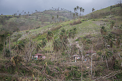 October 9, 2016 - Les Cayes, Haiti - Broken trees on the mountains near Les Cayes, Haiti, on October 9, 2016.The number of people killed in Haiti by Hurricane Matthew hit 1,000 people on Sunday, as the country battled deaths from cholera and some authorities had to start burying the dead in mass graves. (Credit Image: © Bahare Khodabande/NurPhoto via ZUMA Press)