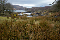 GV on the island. Feature on the community on the island of Ulva, who have been awarded £4.4m in funding for their island buyout.
