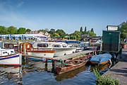 Henley on Thames, England, United Kingdom, 28th June 2019, Henley Royal Regatta Qualifiers, time trial, on Henley Reach, [© Peter SPURRIER/Intersport Image]<br /> <br /> 16:35:28
