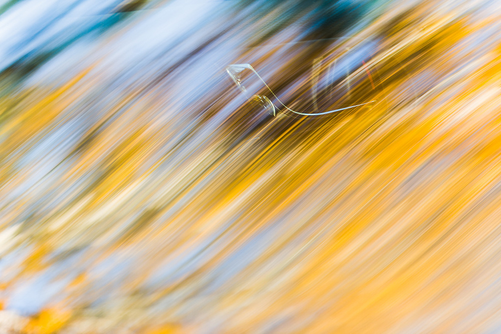 Streaked reflection of the autumn forest on an automobile windshield, interior door handle visible, September, Hubbard County, Minnesota, USA