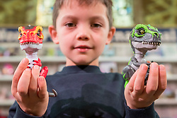 "© Licensed to London News Pictures. 14/11/2018. LONDON, UK. Harry, aged 8, plays with Untamed Jailbreak T-Rex Playset by Fingerlings. Preview of ""DreamToys"", the official toys and games Christmas Preview, held at St Mary's church in Marylebone.  Recognised as the countdown to Christmas, the Toy Retailer's Association, an independent panel of leading UK toy retailers, have selected the definitive and most authoritative list of what toys will be the hottest property this Christmas. [Child models provided by show organisers, permission obtained to be photographed].  Photo credit: Stephen Chung/LNP"