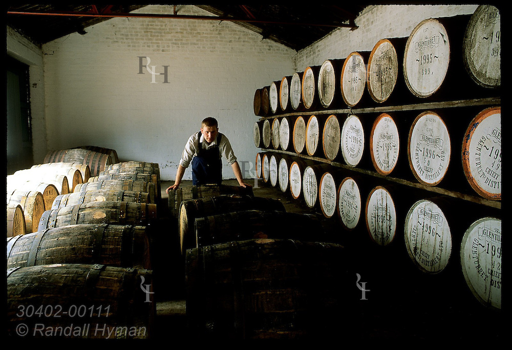 Worker rolls newly-filled whisky cask into row in the warehouse at Glenturret Distillery; Crieff Scotland