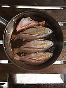 Fried fish. On Mantabuan island.