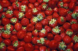 Strawberry stall in La Boqueria market; Barcelona,