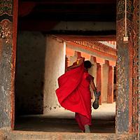 Asia, Bhutan, Wangdue. Monk at Wangdue Phodrang Dzong.