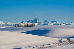 The rolling agricultural hills of eastern Idaho make a fine foreground for the Grand Teton crown beyond.