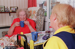 Elderly woman and carer drinking tea and talking,