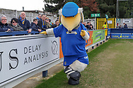 Haydon the Womble posing and pointing a finger during the EFL Sky Bet League 1 match between AFC Wimbledon and Gillingham at the Cherry Red Records Stadium, Kingston, England on 23 March 2019.