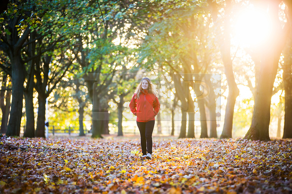 © Licensed to London News Pictures. 22/10/2018. Leeds UK. 13 year old Cerys walks across a carpet of fallen leaves at Temple Newsam park in Leeds this morning on a sunny start to the day in Yorkshire. Photo credit: Andrew McCaren/LNP