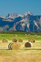 Bales of hay  in filed near Waterton Lakes National Park Alberta Canada