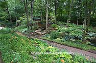 65021-029.02 Shade garden with pond, waterfall, hostas, ferns, impatiens, daylillies, bridge, gazebo, paths,  St. Louis  MO
