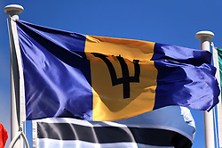The flag of Barbados on a pole at the Commonwealth Games