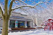 Snow, Reading Public Museum and Arboretum, Reading, PA
