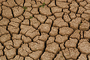 Cracks on dried soil