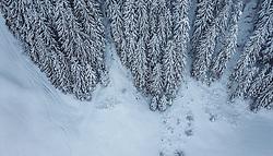 THEMENBILD - Schneebedeckte Bäume mit winterlicher Landschaft, aufgenommen am 12. Dezember 2018 in Saalbach, Österreich // snow-covered trees with Landscape, Saalbach, Austria on 2018/12/12. EXPA Pictures © 2018, PhotoCredit: EXPA/ JFK