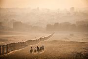 Cairo, Egypt, 2 aug 2018, 3 Horseriding along the fences of the pyramids