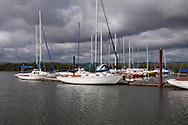 Boats on Fern Ridge Lake