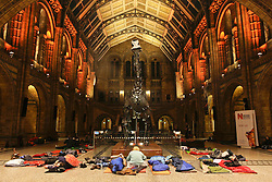 Natural History Museum, London, UK. 17/01/2014<br /> People attending the Dino Snore sleepover event settle down for the night underneath the Diplodocus exhibit, in the main hall of the Natural History Museum in London. The 'Dino Snore' sleepover event allowed paying adults to spend the night inside the museum, where people could sleep among the dinosaur exhibits along with activities such as eating edible bugs and a lecture on the sex lives of insects.<br /> Photo: Anna Branthwaite/LNP