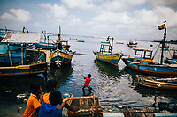 Jaffna, Sri Lanka -- February 8, 2018: Fishermen bring their morning catches from the sea to the market.