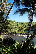 Hawaii Tropical Botanical Garden, Onemea, Hamakua coast, Island of Hawaii