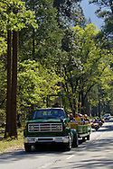 Tourists on open air tourist bus and traffic on Yosemite Valley road in spring, Yosemite National Park, California