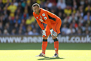 Goalkeeper Artur Boruc of Bournemouth looking on. Premier league match, Watford v AFC Bournemouth at Vicarage Road in Watford, London on Saturday 1st October 2016.<br /> pic by John Patrick Fletcher, Andrew Orchard sports photography.