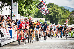 Firsto loop across finish line at Novo Mesto on 5th Stage of 26th Tour of Slovenia 2019 cycling race between Trebnje and Novo mesto (167,5 km), on June 23, 2019 in Slovenia. . Photo by Peter Podobnik / Sportida
