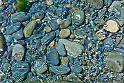 Tidal sea water covers rocks and stone shingle, Kilkee, County Clare, West Coast of Ireland