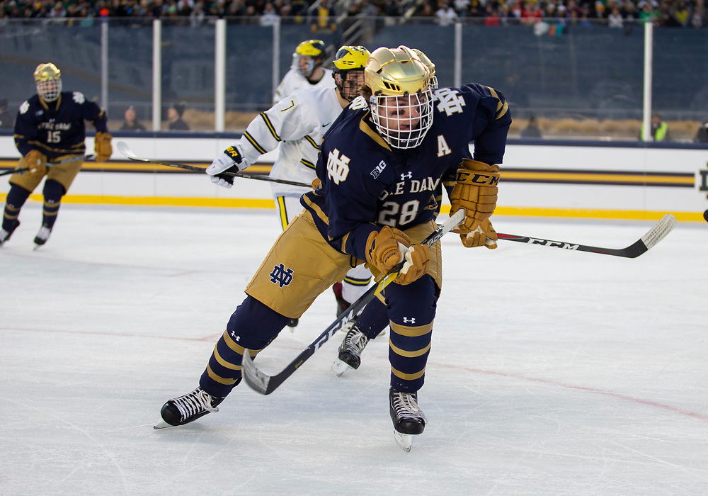 January 05, 2019:  Notre Dame forward Jack Jenkins (28) during NCAA Hockey game action between the Michigan Wolverines and the Notre Dame Fighting Irish at Notre Dame Stadium in South Bend, Indiana.  Michigan defeated Notre Dame 4-2.  John Mersits/CSM