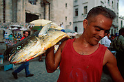 CUBA, HAVANA (HABANA VIEJA) fisherman carrying his fresh catch to a restaurant