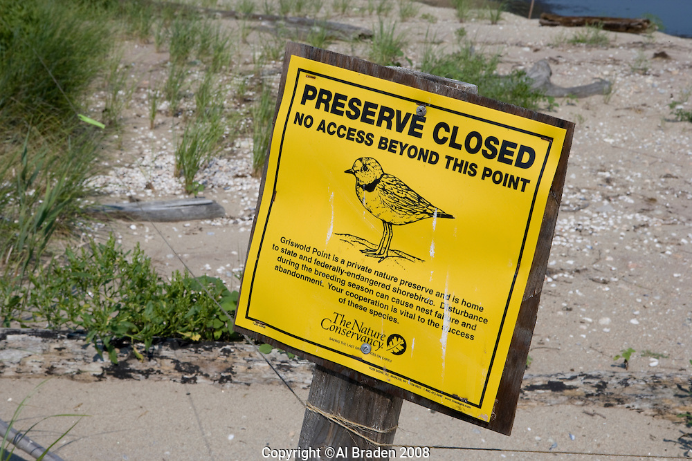 Shorebird conservation area at the mouth of the Connecticut River, Griswold Point, Old Lyme, CT