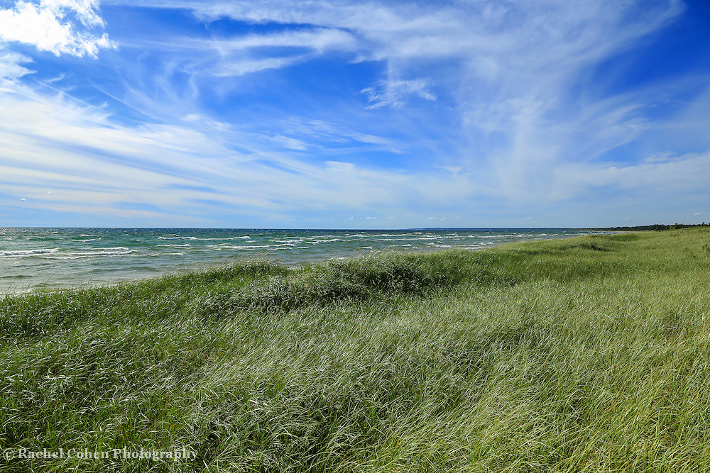 """The Answer is Blowin in the Wind""""<br /> <br /> Strong winds blow across the tall sand grass. Waves on Lake Michigan come in to shore rolling with white caps. The sky of white and blue, swirls in the wind!!<br /> <br /> The Great Lakes by Rachel Cohen<br /> The Great lakes by Rachel Cohen"""