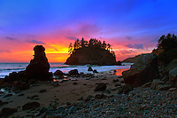 090-P83207<br /> <br /> Trinidad State Beach<br /> ©2014, California State Parks<br /> Photo by Brian Baer