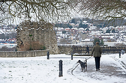 © Licensed to London News Pictures 10/02/2021.        Rochester, UK. A man walking his dog in Rochester Castle Gardens in Kent. Temperatures are set to drop to a freezing cold -7C in Kent and the South East tonight with more snowfall expected. Photo credit:Grant Falvey/LNP