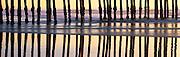 Pismo Pier Sunset