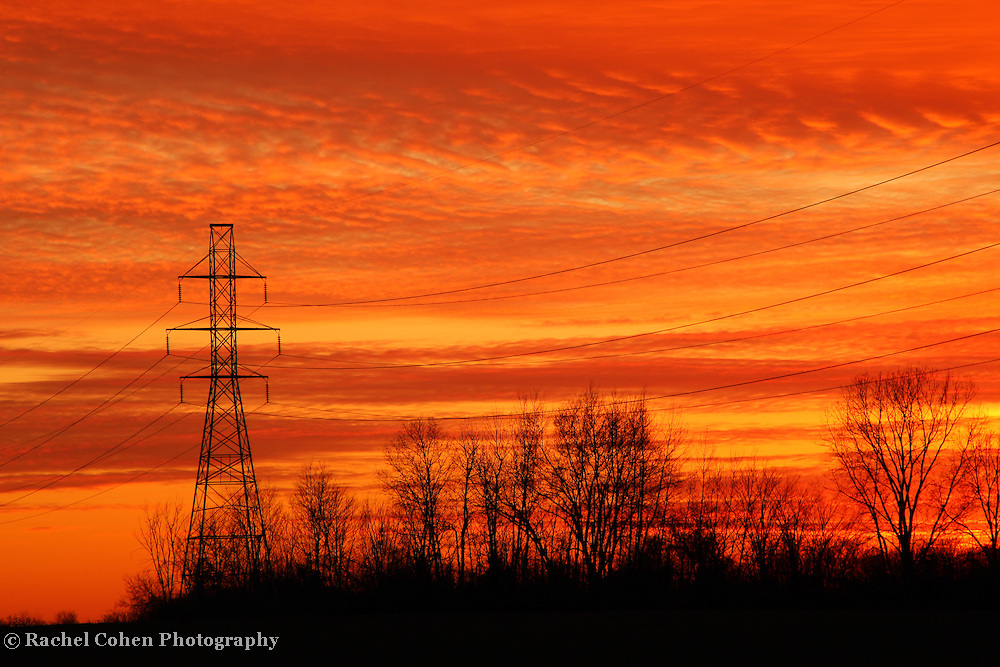 """""""Sunset in Electric Orange""""<br /> <br /> Electric power lines, trees in silhouette, and vibrant colors of sunset!!<br /> <br /> Sunset Images by Rachel Cohen"""