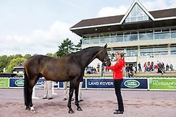 Nicole Geiger, (SUI), Ry de Lafayette CH, - Horse Inspection Para Dressage - Alltech FEI World Equestrian Games™ 2014 - Normandy, France.<br /> © Hippo Foto Team - Jon Stroud<br /> 25/06/14