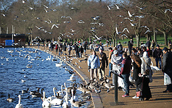 © Licensed to London News Pictures. 23/12/2015. London, UK. Visitors to Hyde Park enjoy the sunshine next to the Serpentine. Photo credit: Peter Macdiarmid/LNP