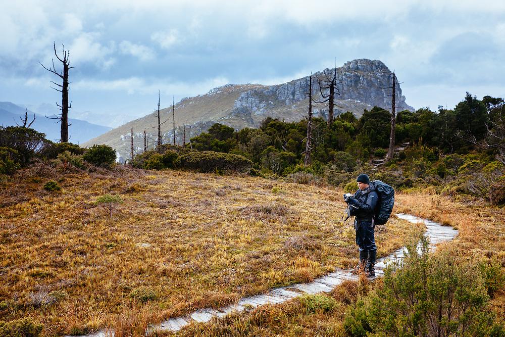 A bushwalker/hiker stops to take a photo along the mountain trail toward Frenchmans Cap, Franklin-Gordon Wild Rivers National Park.