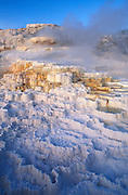 Morning light on Minerva Spring at Mammoth Hot Springs, Yellowstone National Park, Wyoming USA
