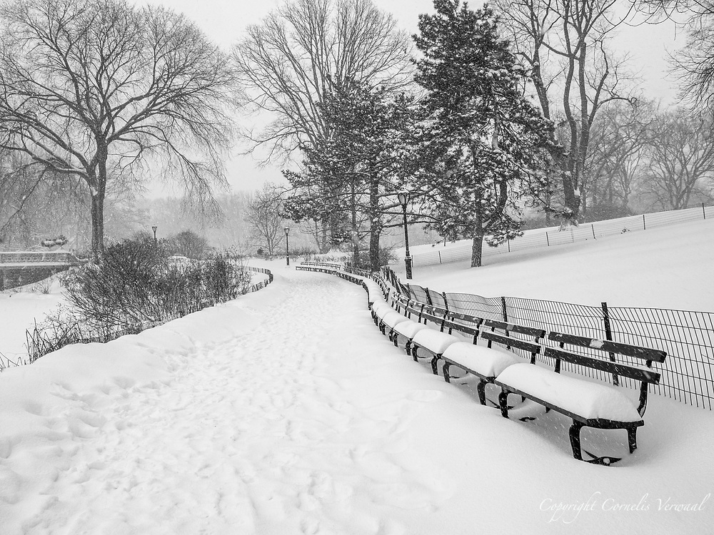 Snow-covered benches along a path along The Lake towards Bow Bridge in Central Park.
