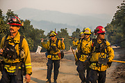 12092017 - Carpinteria, California USA: Firefighters arrive to mop up hot spots after a fire on a steep hill next to an avocado farm in Carpinteria, California, Saturday, December 9, 2017. The Santa Ana wind driven Thomas Fire has now began burning in Santa Barbara County after starting near Santa Paula in Ventura County on Monday. Firefighters from across California, and the Western United States have joined the effort to fight the wildfires in Southern California. The Thomas Fire is one of six that are burning. (Photo by Jeremy Hogan) ©2017 All rights reserved