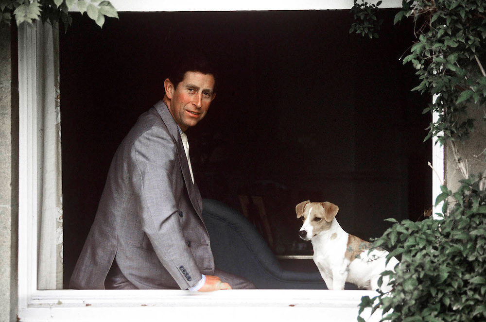 Prince Charles,Prince of Wales and his dog 'Tigger' seen at his home Highgrove, Gloucestershire,UK. August 1988. Photographed by Jayne Fincher