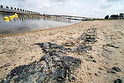 Nederland, Nijmegen, 19-7-2019 Door de lage waterstand in de Waal is de aanvoer van water voor de Nevengeul, spiegelwaal, drooggevallen. Hierdoor stroomt de spiegelwaal niet meer door en is er blauwalg ontstaan zodat het een risico is erin te zwemmen . Er is een zwemverbod ingesteld .Foto: Flip Franssen