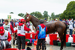 Isa Abdulla Ali Al Hazza, (BRN), Raja Du Roch - Endurance - Alltech FEI World Equestrian Games™ 2014 - Normandy, France.<br /> © Hippo Foto Team - Leanjo de Koster<br /> 25/06/14
