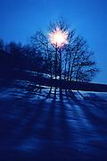 Cold, winter sunrise through trees - Utah.
