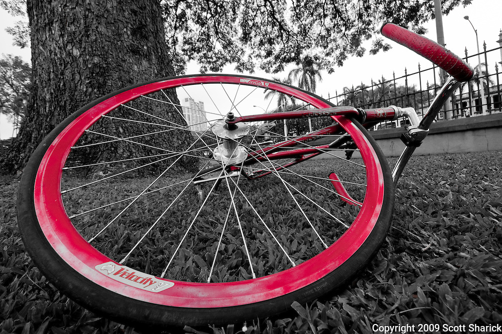 A bicycle with red wheels and handlebars lies on the grass in Honolulu, Hawaii. Missoula Photographer