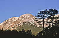 12,454 ft. Mount Chapin of the Mummy Range, viewed from Horseshoe Park. Rocky Mountain National Park, Colorado.