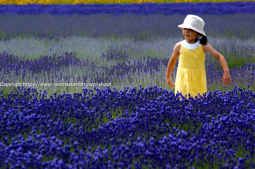 Young girl walking in lavender field at Tomita Lavender Farm in Furano district of Hokkaido Japan